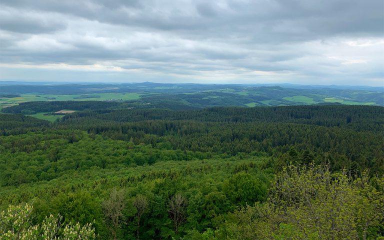 Hohe_Acht_Eifel_Waldhotel_am_Nuerburgring_Wald_Eifel_Wandern_Ausflug_web